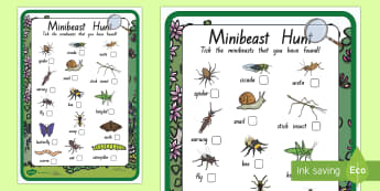 New Zealand Minibeast Hunt Checklist - New Zealand, minibeast, bugs, insects, checklist, hunt, treasure hunt, science, Year 1, Year 2, Year