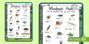 New Zealand Minibeast Hunt Checklist - New Zealand, minibeast, bugs, insects, checklist, hunt, treasure hunt, science, Year 1, Year 2, Year