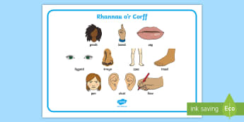 Mat Geiriau Rhannau'r Corff - welsh, body, word, mat, parts, fy nghorff, labelu'r corff, fy nghorff