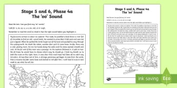 Northern Ireland Linguistic Phonics Stage 5 and 6 Phase 4a 'oo' Sound Activity Sheet  - NI, Worksheet, sound search, text