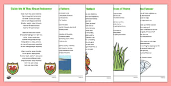 Elderly Care St David's Song Words - Elderly, Reminiscence, Care Homes, St. David's Day