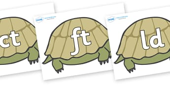 Final Letter Blends on Tortoises - Final Letters, final letter, letter blend, letter blends, consonant, consonants, digraph, trigraph, literacy, alphabet, letters, foundation stage literacy