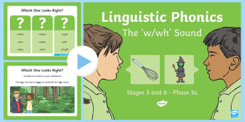 Northern Ireland Linguistic Phonics Stage 5 and 6 Phase 3a, 'w, wh' Sound PowerPoint - Linguistic Phonics, Phase 3a, Northern Ireland, 'w', 'wh', sound, sound search, word sort, inv