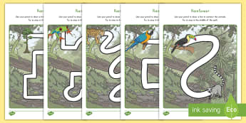 Rainforest Themed Pencil Control Activity - rainforest, jungle, fine motor skills, pencil control