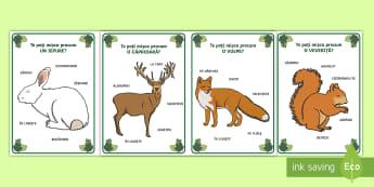 Mișcările animalelor de pădure Cartonașe - joc și mișcare, animale, habitat, comunicare, activități, jocuri, animale,Romanian