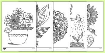 Coloriages anti-stress : La pousse des plantes - arts plastiques, arts, couleurs, cycle 1, cycle 2, cycle 3, plantes, pousser, pousse, plants