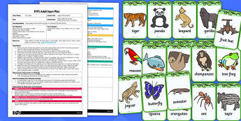 Jungle Animal Masks EYFS Adult Input Plan and Resource Pack - lesson plan