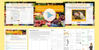 Jewish Practices: The Nature and Purpose of Jewish Food Laws Lesson Pack - Judaism, Halakah, Kashrut, Kosher, Parve, Treifah, KS4, GCSE