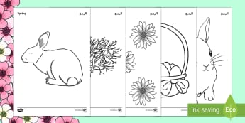 Spring Colouring Sheets Arabic/English - Spring Colouring Sheets -  Spring, colouring, fine motor skills, poster, worksheet, lambs, daffodils