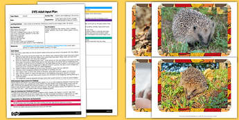 Autumn Leaf Hedgehog Craft Activity EYFS Adult Input Plan and Resource Pack