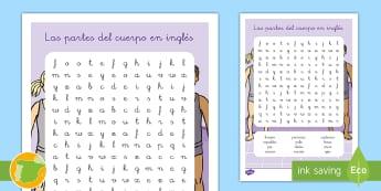 A1 Sopa de letras: Las partes del cuerpo en inglés - English, human body, the body, anatomía, anatomy,