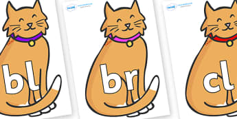 Initial Letter Blends on Pussy Cats - Initial Letters, initial letter, letter blend, letter blends, consonant, consonants, digraph, trigraph, literacy, alphabet, letters, foundation stage literacy