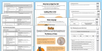 Year 4 Non Fiction Cats Reading Assessment Resource Pack - Reading Practice Tests for Wales, Reading, reading, tests, test, profion, darllen a deall, year 3, y
