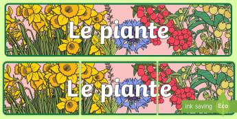 Le piante Striscione - natura, piante, naturale, scienze, lezione, italiano, italian, materiale, scolastico