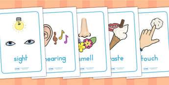The Five Senses Posters - senses, ourselves, feelings, emotions