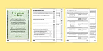 Year 6 Reading Assessment Poetry Term 3 - test, sats, summative, diagnostic, practice, sample