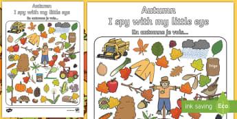 I Spy With My little Eye Activity Sheet English/French  -  season, weather,autunm,worksheet,vocabulary