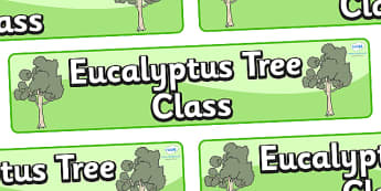 Eucalyptus Themed Classroom Display Banner - Themed banner, banner, display banner, Classroom labels, Area labels, Poster, Display, Areas