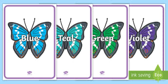Colours on Butterflies - butterflies, butterfly, poster, display, frieze, english,