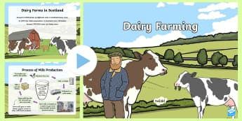 Dairy Farming PowerPoint - CfE, dairy, farming, Scottish farming, farm, milk, cow