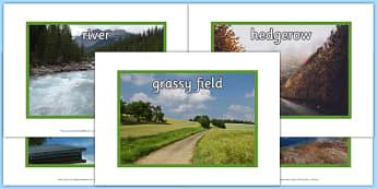 Biodiversity Habitat Photo Pack - photo, pack, habitat, pictures, display, biodiversity, green schools