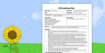 Summer Fruit Kebabs EYFS Adult Input Plan