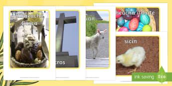 Easter Display Photos Gaeilge  - Easter, Irish, Gaeilge, Cáisc, An Cháisc,Irish