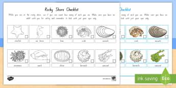The Rocky Shore Checklist - Rocky Shore, Coast, New Zealand's coast, crabs, sea animals, ocean, coastline