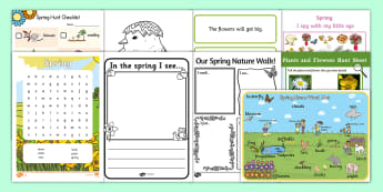 Spring Aistear Resource Pack - roi, ireland, chick, rain, new life, baby, seasons, weather. oral language