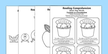 Reading Comprehension Seven Key Words Activity Sheets Polish Translation - SEN/SALT, reading, inference, information, speech, language, instructions, colour, colouring, worksheet