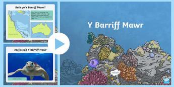 Pŵerbwynt Y Barriff Mawr - reef, barrif, pysgod, o dan y mor, fish, under the sea,Welsh