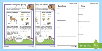 How To Look After a Dog Differentiated Reading Comprehension Activity English/Afrikaans - Pets, animals, nature, life, literacy, troeteldiere, diere , EAL