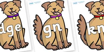 Silent Letters on Dogs - Silent Letters, silent letter, letter blend, consonant, consonants, digraph, trigraph, A-Z letters, literacy, alphabet, letters, alternative sounds