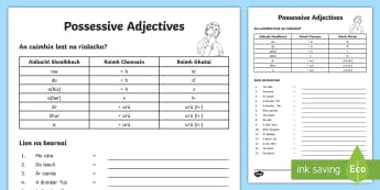 Possessive Adjectives Worksheet / Activity Sheet Gaeilge - An, Aidiacht, Shealbhach, Grammar, Irish, Possessive, Adjective ,Irish, worksheet