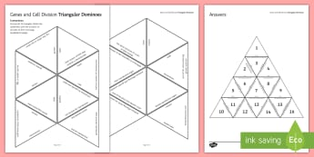 Genes and Cell Division Tarsia Triangular Dominoes - Tarsia, dominoes, biology, gcse, gene, genes, cell division, meiosis, mitosis, cells, genetics, chro, plenary activity