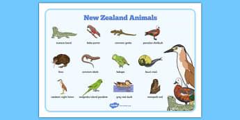 New Zealand Animals Word Mat
