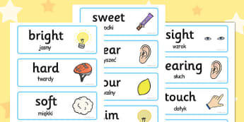 Senses Topic Words Polish Translation - polish, senses, topic, words, cards