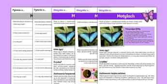 Czytanie ze zrozumieniem Motyle