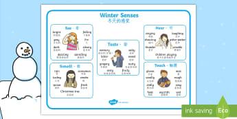 Winter Senses Word Mat English/Mandarin Chinese - winter, senses, word mat, keywords, EAL