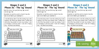 Northern Ireland Linguistic Phonics Stage 5 and 6 Phase 3a, 'oy' Sound Activity Sheet