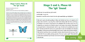 Northern Ireland Linguistic Phonics Stage 5 and 6 Phase 4a 'igh' Sound Worksheet / Activity Sheet  - Linguistic Phonics, Stage 5, Stage 6, Phase 4a, Northern Ireland, 'igh' sound, Worksheet, sound