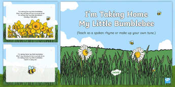 I'm Taking Home My Little Bumblebee Song PowerPoint - EYFS, Early Years, Key Stage 1, KS1, songs, music, minibeasts, insects, bugs, creepy crawlies, spide