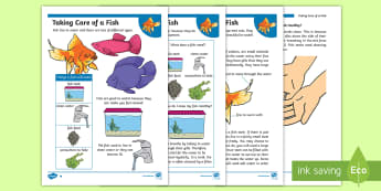 KS1 How to Look After a Fish Differentiated Fact File - Pets, pet, EYFS, KS1, take, care, look, after, family, member, members, vet, vet surgery, surgery, i - Pets, pet, EYFS, KS1, take, care, look, after, family, member, members, vet, vet surgery, s