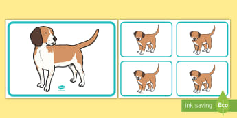Mummy Dog and Puppies Picture Cards - EYFS Pets, Animals, National Pet Month, dog, mummy dog, puppies, mother and baby, animals and their