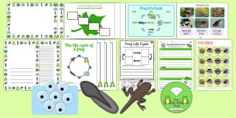 Frog Life Cycle - frog, life cycle, resources, activities - Frog Life Cycle - frog, life cycle, resources, activities