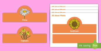 All about Plants Role-Play Headbands -  Growth, Seed, Presentation, Team Work, Flowers, role-play, headbands