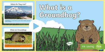 Groundhog Day: What Is a Groundhog Information PowerPoint - Groundhog Day, woodchuck, animal, US, USA, America