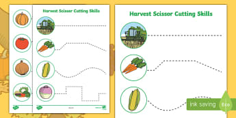 Harvest Themed Cutting Skills Worksheet / Activity Sheets