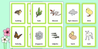 Spring Pairs Matching Game - games, match, activity, activities
