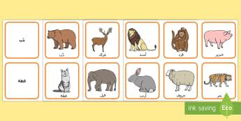 بطاقات مطابقة أسماء الحيوانات وصورها  - حيوانات، بطاقات مطابقة، أنشطة، علوم,Arabic